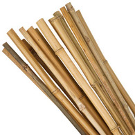5Ft Bamboo Canes x 10