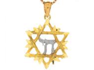 Dije Colgante De 2.5cm Estrella Judia De David Y Letra Judia En Oro 2 Tonos (OM#6493)