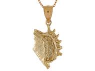 Colgante En Disenno De Concha De Mar Unica En Oro Amarillo De Alto Brillo (OM#10768)