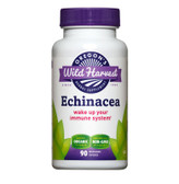 Buy Echinacea with Tops and Root 90 Non-GMO Veggie Caps Oregon's Wild Harvest Online, UK Delivery, Natural Immune