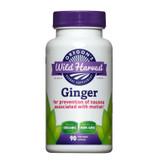 Buy Ginger 90 Veggie Caps Oregon's Wild Harvest Online, UK Delivery, Nausea Treatment Relief