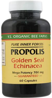 Buy Propolis Golden Seal Echinacea 60 Caps Y.S. Eco Bee Farms Online, UK Delivery, Bee Supplements