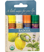 Buy Classic Lip Balm Sticks 4 Sticks .15 oz (4.2 g) Each Badger Company Online, UK Delivery, Lip Balms