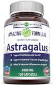 UK Buy Astragalus 1000 mg, 120 Caps, Amazing Formulas