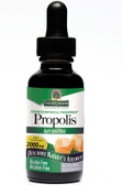 Propolis No Alcoh 1 oz, Nature's Answer, UK shop