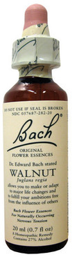 Buy Flower Essence Walnut 20 ml Bach Flower Essences Online, UK Delivery, Herbal Remedy Natural Treatment
