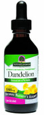 Buy Dandelion Root Extract 2 oz Nature's Answer Online, UK Delivery, Herbal Remedy Natural Treatment