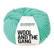 WATG Crazy Sexy Wool - Magic Mint