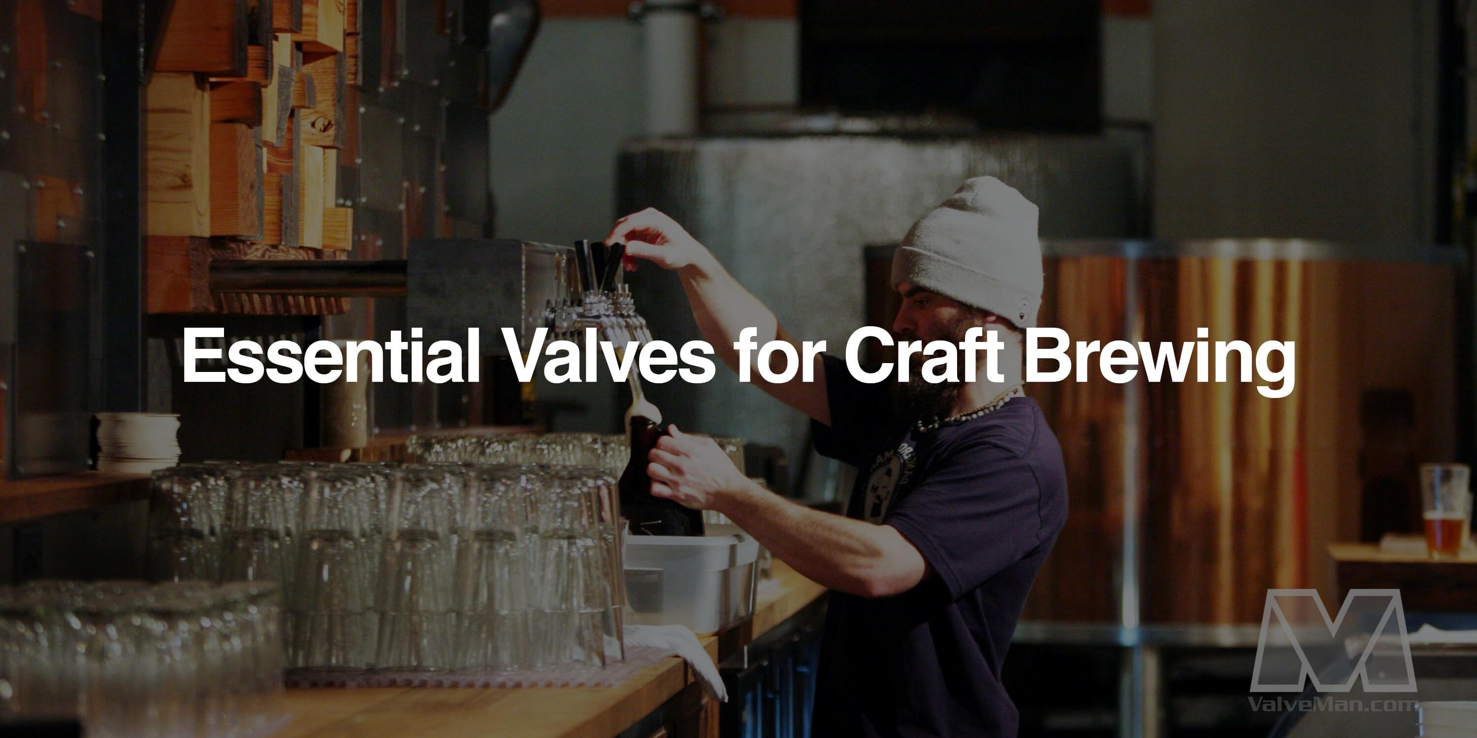 Craft Brewing - ValveMan.com