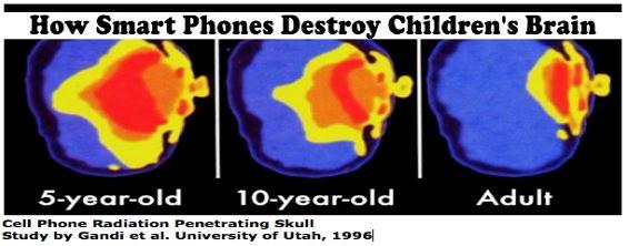 cellphone-penetration.jpg