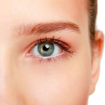 Waxing - Upper Eye Brow