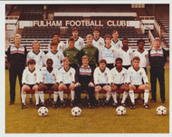 Superb hand signed Fulham FC Official Team Photograph season 1985-86, signed by 16 of the squad to the front of the photograph and 3 signatures to the rear (19 in total).