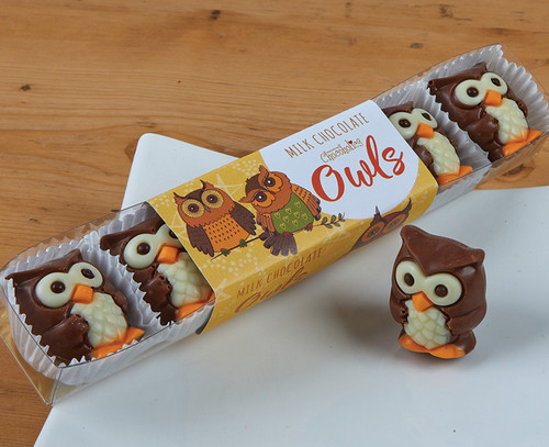 5037 Milk Chocolate Owls with Praline Filling