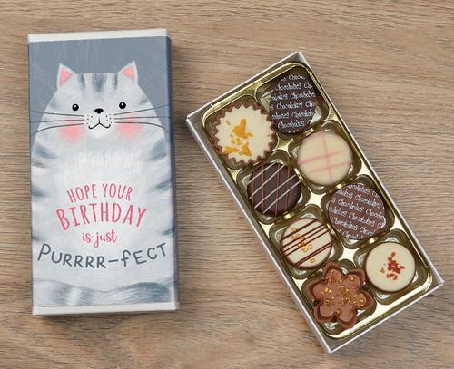 5504 Eight Luxury Chocolates Birthday Cat Design