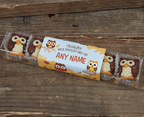 Personalised Milk Chocolate Owls with Praline Filling