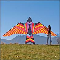 George Peters Sky Bird - Aloha