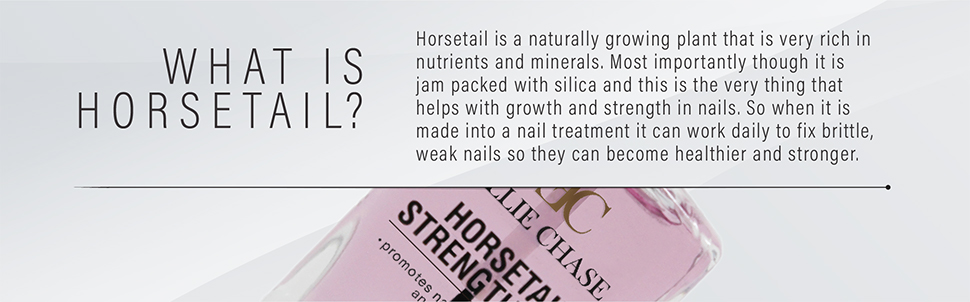 horsetail-banners-workfile-04.jpg