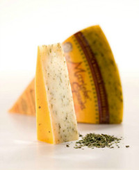 Burning Nettle Gouda from Wisconsin Cheese Masters