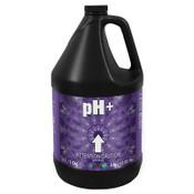 Nutri Plus,  pH up, Calcium Carbonate, 4L