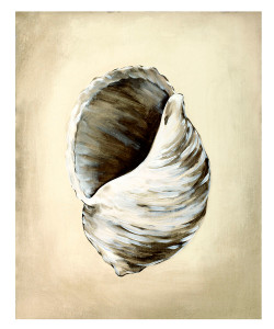 Seashells III Unframed Giclee with Crackle Finish