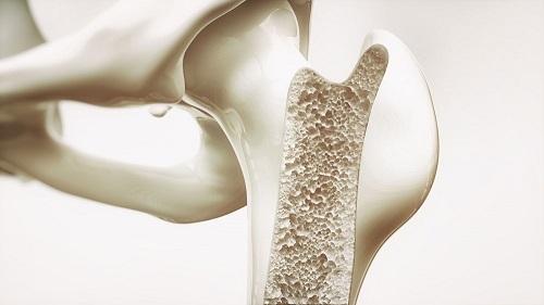 bone metabolism assays image