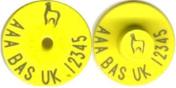 BAS4, Button Type Tag Only