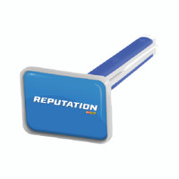 Reputation Vivid Vent Stick *** SHIPS WITHIN 24 HOURS ***