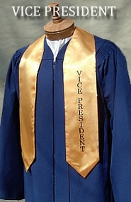 Vice President Stole