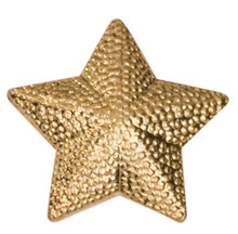 Gold Star Metal Chenille Letter Insignia