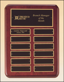 TRO-P3760 (9x12) (12 plates)