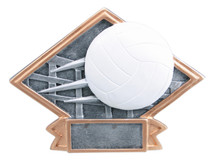 "4 1/2"" x 6"" Volleyball Diamond Plate Resin"