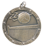 "2 1/2"" Gold Volleyball Shooting Star Medal"