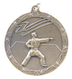 "2 1/2"" Gold Karate Shooting Star Medal"