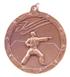 "2 1/2"" Bronze Karate Shooting Star Medal"