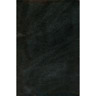 Biblia de la Americas (LBLA) Tamaño Manuel