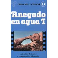 Anegado en agua I, introducción por Santiago Escuain