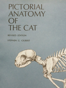 Pictorial Anatomy of the Cat