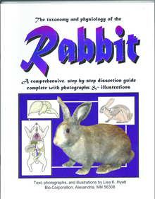 Rabbit Dissection Reference Guide