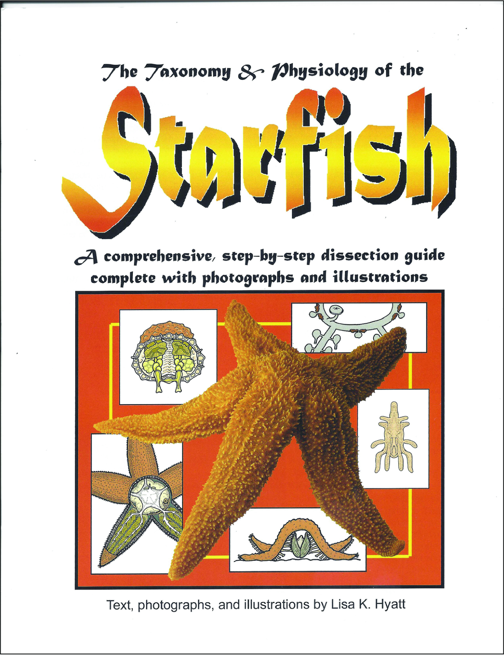 Diagram Of A Starfish Manual Guide