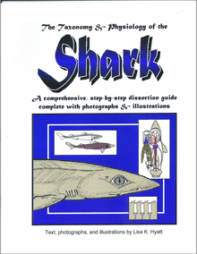 Shark Dissection Reference Guide