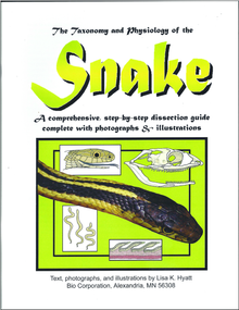 Snake Dissection Reference Guide