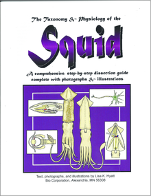 Squid Dissection Reference Guide