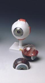 Classic Human Eye Model