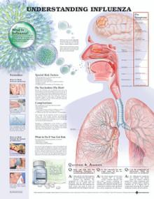 Reference Chart - Understanding Influenza
