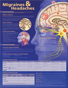 Reference Chart - Migraines & Headaches