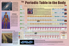 Chart - Periodic Table in the Body