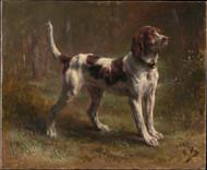A Limier Briquet Hound 1856 by Rosa Bonheur Framed Print on Canvas