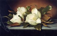 Giant Magnolias by Martin Johnson Heade Framed Print on Canvas