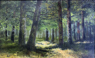 Forest 1890 by Ivan Shishkin Framed Print on Canvas