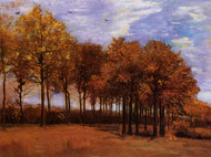 Autumn Landscape by Vincent van Gogh Framed Print on Canvas